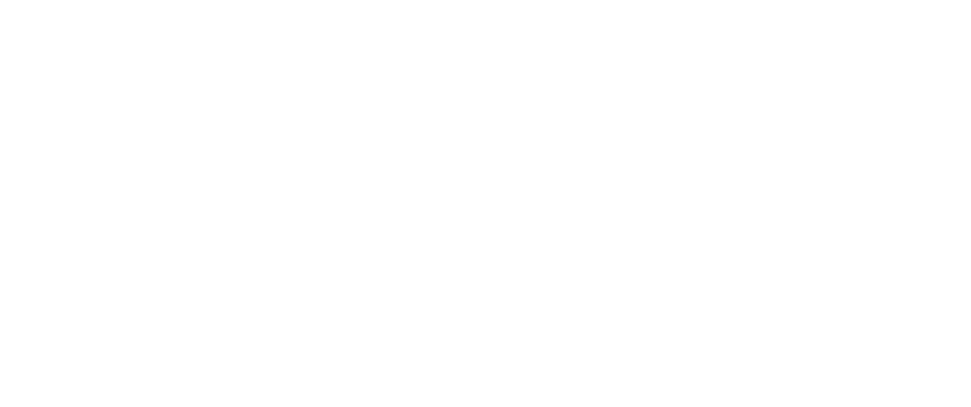 JAPAN QUALITY TO THE WORLD